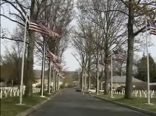 Avenue of Flags at Woodlawn National Cemetery